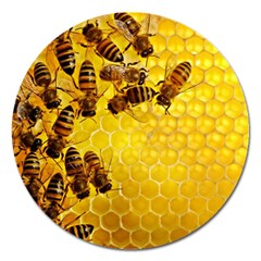 Honey Honeycomb Magnet 5  (round)