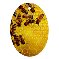 Honey Honeycomb Oval Ornament (two Sides)