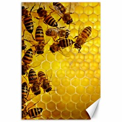 Honey Honeycomb Canvas 24  X 36
