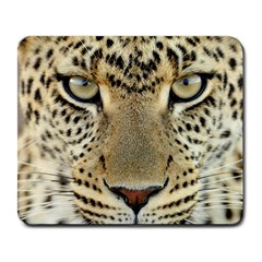 Leopard Face Large Mousepads