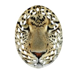 Leopard Face Ornament (oval Filigree)