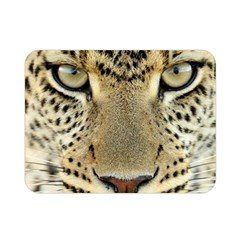 Leopard Face Double Sided Flano Blanket (mini)  by BangZart