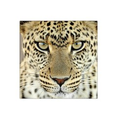 Leopard Face Satin Bandana Scarf