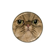 Cute Persian Catface In Closeup Hat Clip Ball Marker by BangZart