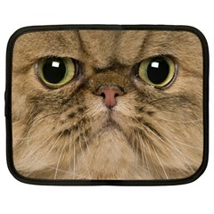 Cute Persian Catface In Closeup Netbook Case (large)