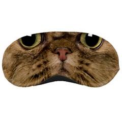 Cute Persian Catface In Closeup Sleeping Masks