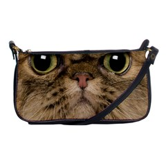 Cute Persian Catface In Closeup Shoulder Clutch Bags