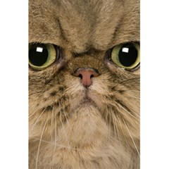 Cute Persian Catface In Closeup 5 5  X 8 5  Notebooks by BangZart
