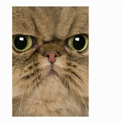 Cute Persian Catface In Closeup Small Garden Flag (two Sides)