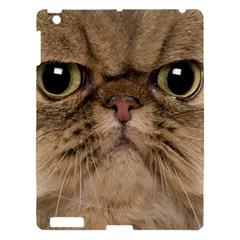 Cute Persian Catface In Closeup Apple Ipad 3/4 Hardshell Case
