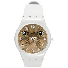 Cute Persian Catface In Closeup Round Plastic Sport Watch (m) by BangZart