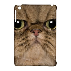 Cute Persian Catface In Closeup Apple Ipad Mini Hardshell Case (compatible With Smart Cover)