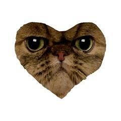 Cute Persian Catface In Closeup Standard 16  Premium Heart Shape Cushions
