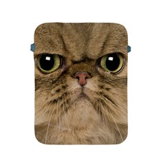 Cute Persian Catface In Closeup Apple Ipad 2/3/4 Protective Soft Cases