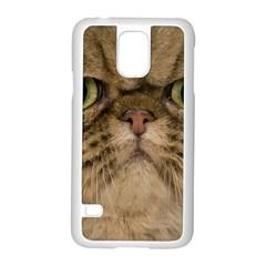 Cute Persian Catface In Closeup Samsung Galaxy S5 Case (white) by BangZart
