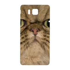 Cute Persian Catface In Closeup Samsung Galaxy Alpha Hardshell Back Case by BangZart