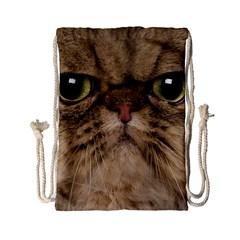 Cute Persian Catface In Closeup Drawstring Bag (small)