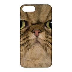 Cute Persian Catface In Closeup Apple Iphone 7 Plus Hardshell Case by BangZart