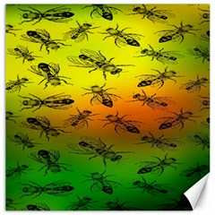 Insect Pattern Canvas 16  X 16   by BangZart