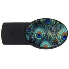 Feathers Art Peacock Sheets Patterns Usb Flash Drive Oval (4 Gb)