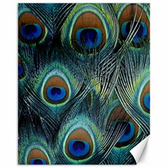 Feathers Art Peacock Sheets Patterns Canvas 16  X 20   by BangZart