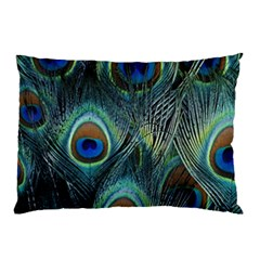 Feathers Art Peacock Sheets Patterns Pillow Case (two Sides) by BangZart
