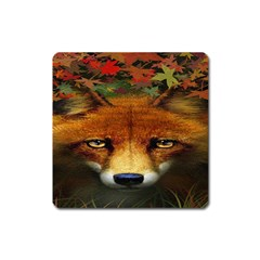 Fox Square Magnet