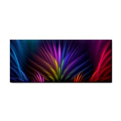 Colored Rays Symmetry Feather Art Cosmetic Storage Cases by BangZart
