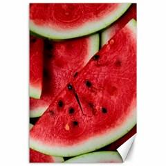 Fresh Watermelon Slices Texture Canvas 24  X 36