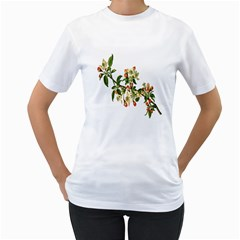 Apple Branch Deciduous Fruit Women s T Shirt (white) (two Sided)