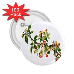 Apple Branch Deciduous Fruit 2 25  Buttons (100 Pack)