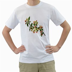 Apple Branch Deciduous Fruit Men s T Shirt (white) (two Sided)