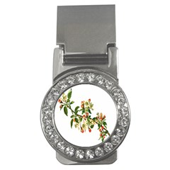 Apple Branch Deciduous Fruit Money Clips (cz)