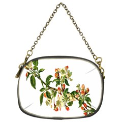 Apple Branch Deciduous Fruit Chain Purses (one Side)  by Nexatart