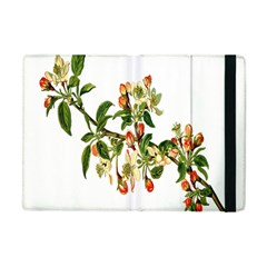 Apple Branch Deciduous Fruit Apple Ipad Mini Flip Case