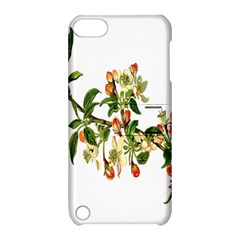 Apple Branch Deciduous Fruit Apple Ipod Touch 5 Hardshell Case With Stand