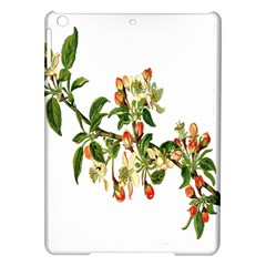 Apple Branch Deciduous Fruit Ipad Air Hardshell Cases