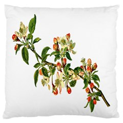 Apple Branch Deciduous Fruit Large Flano Cushion Case (one Side)