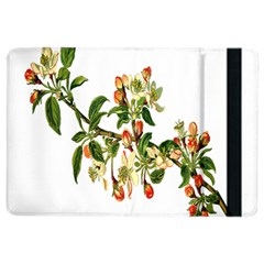 Apple Branch Deciduous Fruit Ipad Air 2 Flip