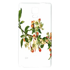 Apple Branch Deciduous Fruit Galaxy Note 4 Back Case
