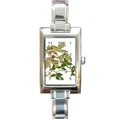 Berries Berry Food Fruit Herbal Rectangle Italian Charm Watch