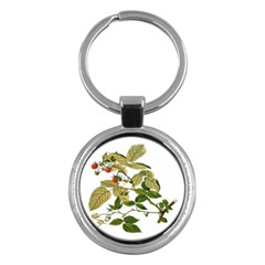 Berries Berry Food Fruit Herbal Key Chains (round)  by Nexatart