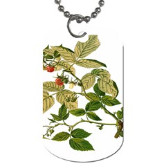 Berries Berry Food Fruit Herbal Dog Tag (two Sides) by Nexatart