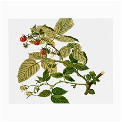 Berries Berry Food Fruit Herbal Small Glasses Cloth (2 Side)