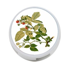 Berries Berry Food Fruit Herbal 4 Port Usb Hub (one Side) by Nexatart