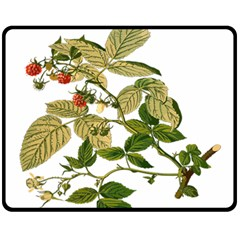 Berries Berry Food Fruit Herbal Fleece Blanket (medium)  by Nexatart