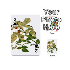 Berries Berry Food Fruit Herbal Playing Cards 54 (mini)