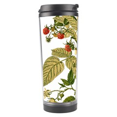 Berries Berry Food Fruit Herbal Travel Tumbler by Nexatart