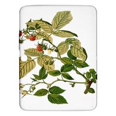 Berries Berry Food Fruit Herbal Samsung Galaxy Tab 3 (10 1 ) P5200 Hardshell Case