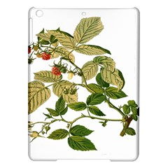 Berries Berry Food Fruit Herbal Ipad Air Hardshell Cases